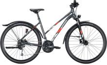 Trekkingbike MORRISON X 3.0 Trapez light anthracite