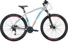 "Mountainbike MORRISON BLACKFOOT 29"" Diamant light grey"