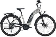 e-Trekkingbike MORRISON SUB 2.0 Wave titanium