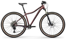 Mountainbike Centurion Backfire Fit Pro 800.29 rot