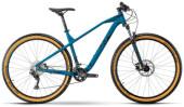 Mountainbike R Raymon HardRay Nine 4.0
