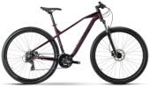 Mountainbike Raymon HardRay Nine 2.0