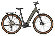e-Trekkingbike Kalkhoff ENTICE 5.B ADVANCE+ green Wave