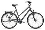 Citybike Kalkhoff AGATTU XXL 8R grey D