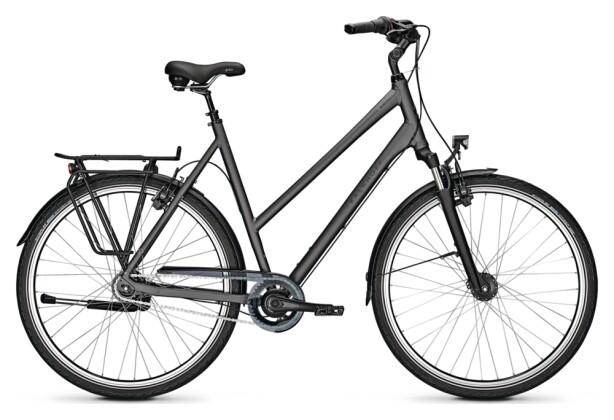 Citybike Kalkhoff AGATTU XXL 8R grey D 2021