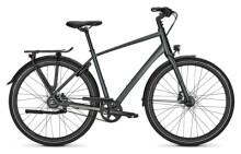 Citybike Kalkhoff ENDEAVOUR 8 BLX green H