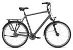 Citybike Kalkhoff AGATTU XXL 8R grey H