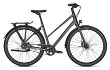 Citybike Kalkhoff ENDEAVOUR 8 BLX green D