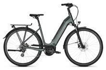 e-Trekkingbike Kalkhoff ENDEAVOUR 3.B MOVE 400 green Wave