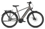 e-Citybike Kalkhoff IMAGE 5.B ADVANCE+ grey H
