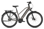 e-Citybike Kalkhoff IMAGE 5.B MOVE+ grey D