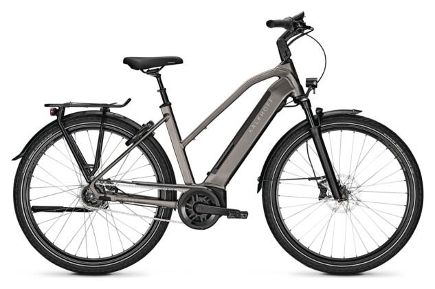e-Citybike Kalkhoff IMAGE 5.B MOVE+ grey D 2021