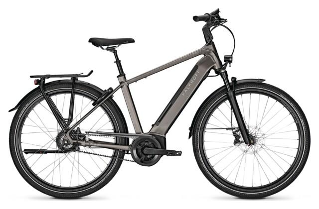 e-Citybike Kalkhoff IMAGE 5.B EXCITE+ grey H 2021