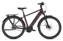 e-Citybike Kalkhoff IMAGE 5.B ADVANCE+ red H
