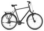Trekkingbike Kalkhoff ENDEAVOUR XXL 27 grey H