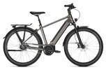 e-Citybike Kalkhoff IMAGE 5.B MOVE+ grey H