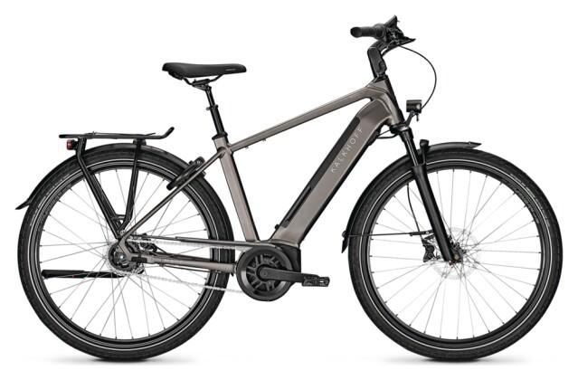 e-Citybike Kalkhoff IMAGE 5.B MOVE+ grey H 2021