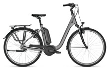 e-Citybike Kalkhoff AGATTU 1.B MOVE grey Comfort
