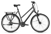 Trekkingbike Kalkhoff ENDEAVOUR XXL 27 grey D