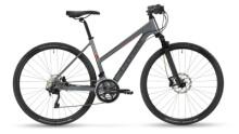 Crossbike Stevens 7X Lady Meteor Grey