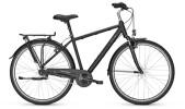 Citybike Raleigh CHESTER 7 Diamond