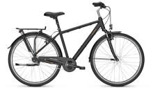 Citybike Raleigh CHESTER 7 Diamond