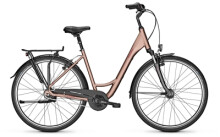 Citybike Raleigh CHESTER 8 Wave brown