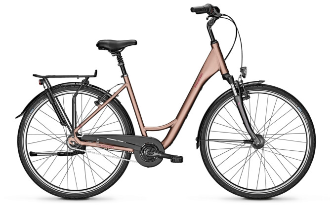 Citybike Raleigh CHESTER 8 Wave brown 2021
