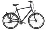 Citybike Raleigh CHESTER 8 XXL Diamond
