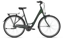 Citybike Raleigh DEVON 7 Wave green