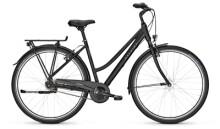 Citybike Raleigh DEVON 7 Trapez