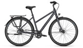 Citybike Raleigh DEVON PRO Trapez