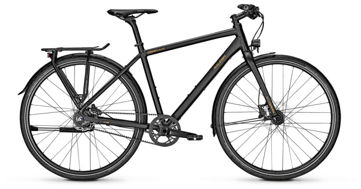 Citybike Raleigh NIGHTFLIGHT PREMIUM Diamond 2021