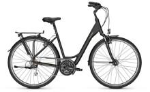 Trekkingbike Raleigh CHESTER 21 Wave black