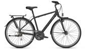 Trekkingbike Raleigh CHESTER 21 Diamond