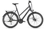 Trekkingbike Raleigh RUSHHOUR 4.0 XXL Trapez