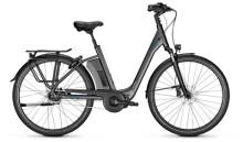 e-Citybike Raleigh CORBY 5 DI2 Comfort