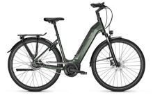 e-Citybike Raleigh BRISTOL 8 Wave green