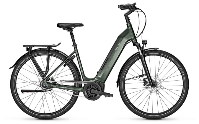 e-Citybike Raleigh BRISTOL 8 Wave green 2021