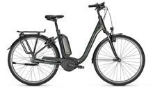 e-Citybike Raleigh KINGSTON 7 PLUS Comfort