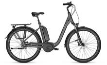 e-Citybike Raleigh KINGSTON 8 XXL Comfort