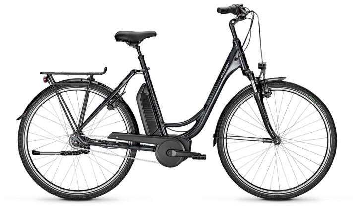 e-Citybike Raleigh JERSEY PLUS Wave grey 2021