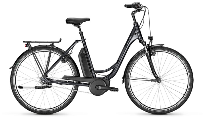 e-Citybike Raleigh JERSEY 7 Wave grey 2021