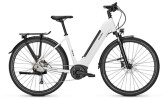 e-Trekkingbike Raleigh KENT 9 Wave white