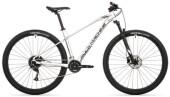 Mountainbike Rockmachine MANHATTAN 90-29 silver