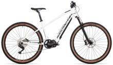 e-Mountainbike Rockmachine TORRENT INT e90-29