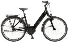 e-Citybike Green's Ashford black