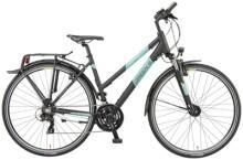 Trekkingbike Green's Dundee black matt