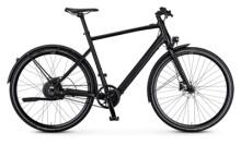 e-Urbanbike Rabeneick TX-E