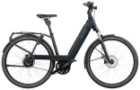 e-Trekkingbike Riese und Müller Nevo3 vario 500 Wh